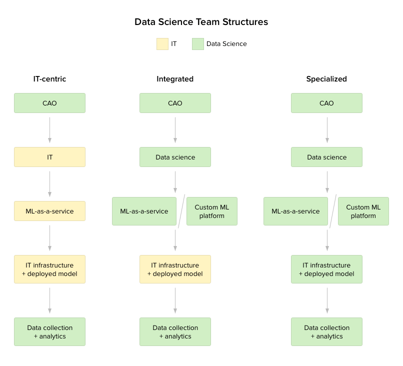 data science team structures: IT-centric, specialized, integrated