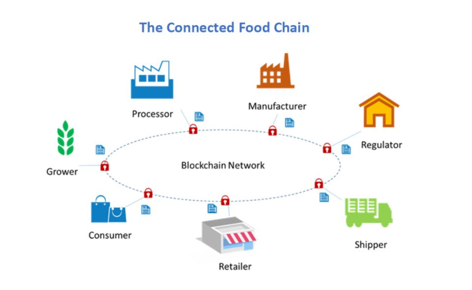 The model of a food supply chain based on the blockchain network