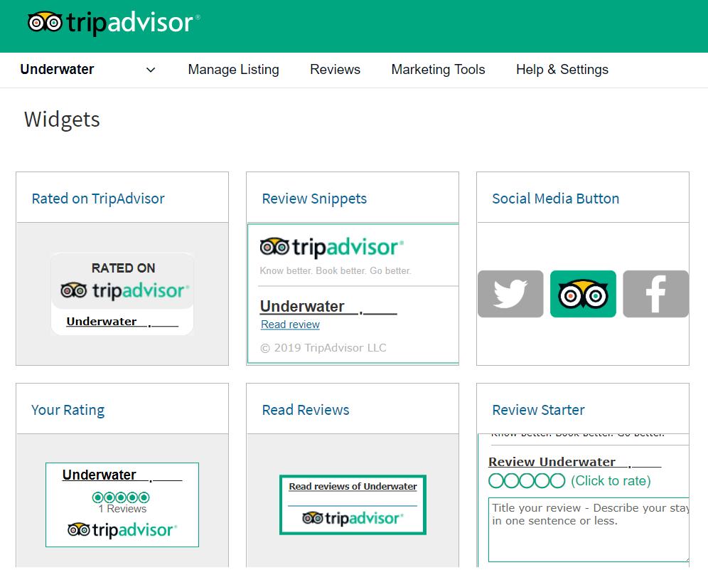 available TripAdvisor Widget options