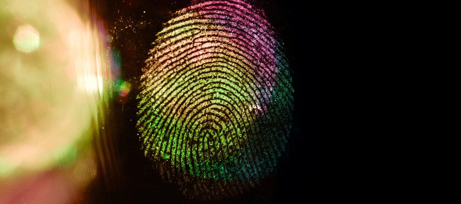 macro fingerprint