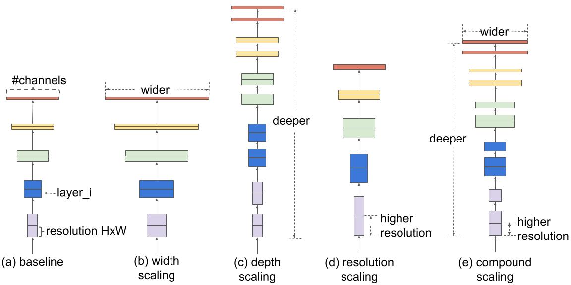 EfficientNet architecture
